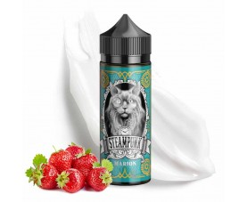 Steampunk Marion Flavor Shots 120ml