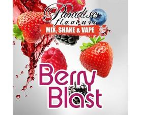 Paradise άρωμα Shake and Vape Berry Blast 25ml (50ml)